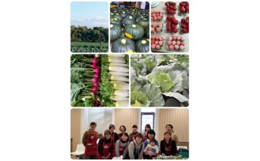酒田市農業女子会が贈る贈るおまかせ野菜ボックス7~8種