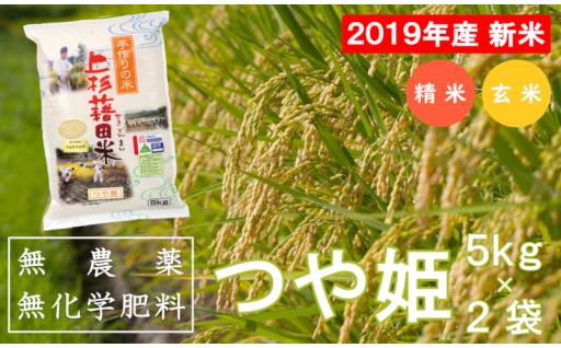 【受付再開/2019年産】無農薬無化学肥料栽培つや姫