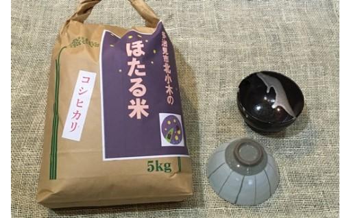 コシヒカリ「ほたる米」と美濃焼茶碗のセット※他の柄も有