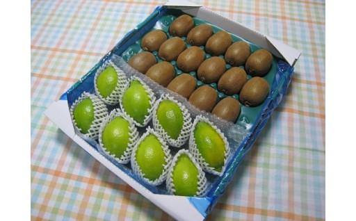 甘楽野キウイフルーツ&グリーンレモン詰め合わせ