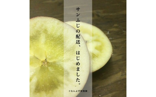 りんごの王様『岩手花巻産 蜜入り「サンふじ」5kg』