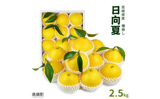 "<""厳選""宮崎県産日向夏(種無し)2.5kg >"