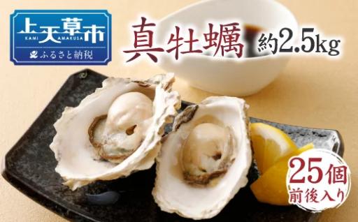 活 天草若真牡蠣(加熱用)【11月頭~5月末発送】