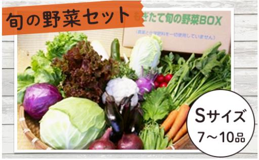 【冬野菜の季節です♪】旬の野菜セットSサイズ
