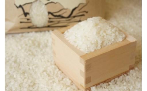 【令和元年産度】熊本県産 無洗米ヒノヒカリ8キロ