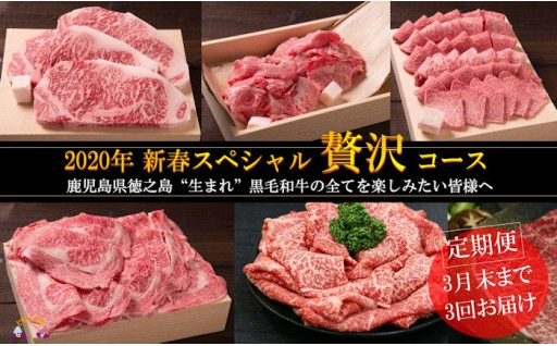【定期便】迎春スペシャルのざき牛贅沢コース寄附10万円