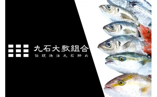リピーター様必見!「神経締めの久石」が送る新たな鮮魚BOX!