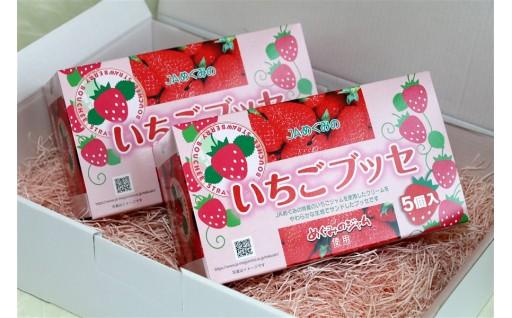 ※ふわふわおいしい岐阜県産いちごぶっせ 2箱