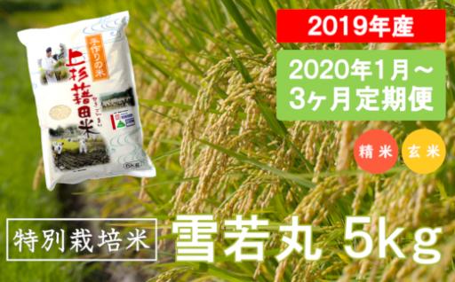 【3ヶ月定期便】特別栽培米 雪若丸_5kg/月