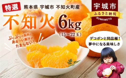 特選不知火 約6kg(15~22玉) みかん フルーツ