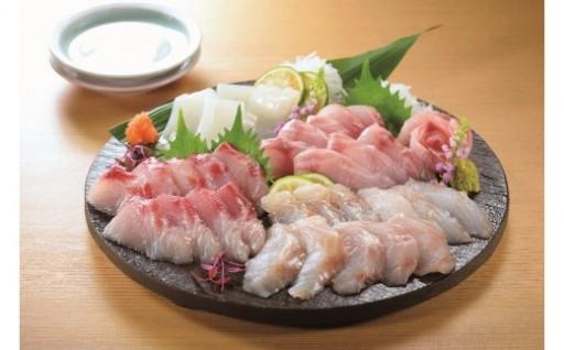 【平戸市】年末年始は新鮮な旬魚のお刺身をどうぞ!!