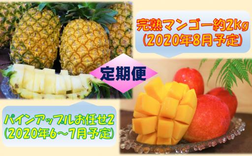 パインアップルお任せ2(5~7個)&完熟マンゴー(約2㎏)