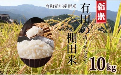 令和元年産 有田の清らかな水で育った棚田米【白米10kg】
