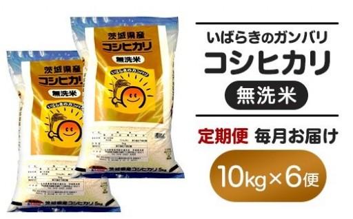 【6ヵ月連続お届け】茨城県産無洗米コシヒカリ10kg