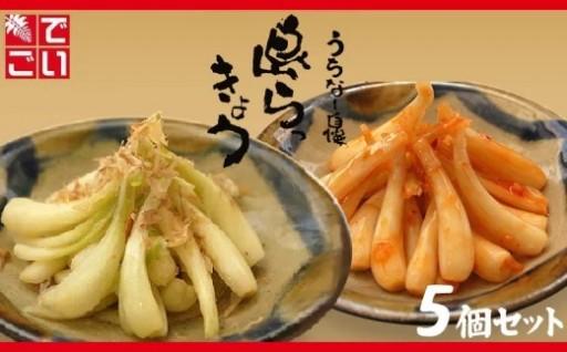 島らっきょう【塩漬け・キムチ漬け】詰め合わせ5個セット