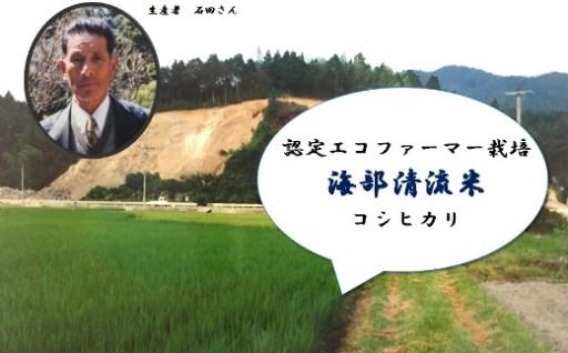 こだわりのコシヒカリ「海部清流米」です!