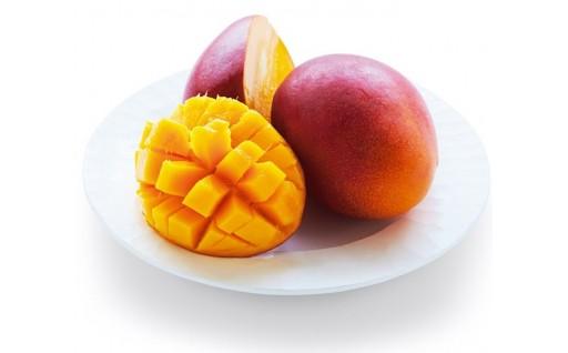 芳醇な香りととろけるような甘さ『日向完熟マンゴー』