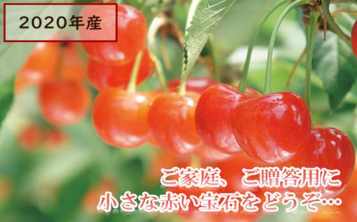 【先行受付】赤い小さな宝石、初夏の味さくらんぼ