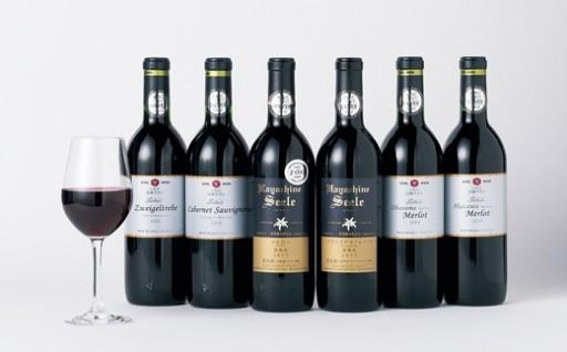 国際コンクールで銀賞・銅賞を受賞したワイン6本セット!