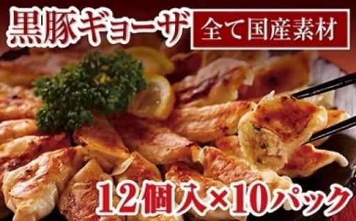 肉汁じゅわ~!鹿児島県産黒豚ギョーザ 12個入り×10パック