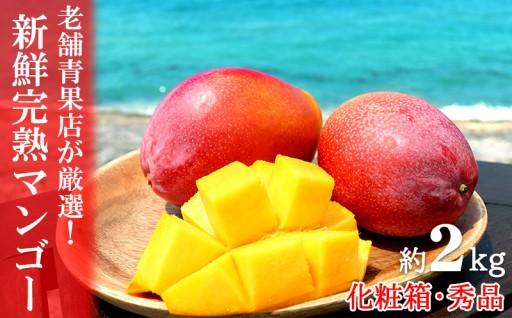 【2020年発送】老舗青果店が厳選!新鮮完熟マンゴー約2kg