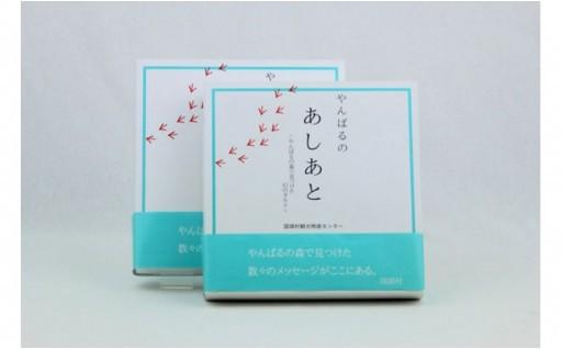 やんばるの茶葉を使った人気のあしあとタルト×2箱