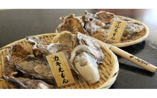 厚岸自慢の牡蠣を食べ比べしてみませんか?