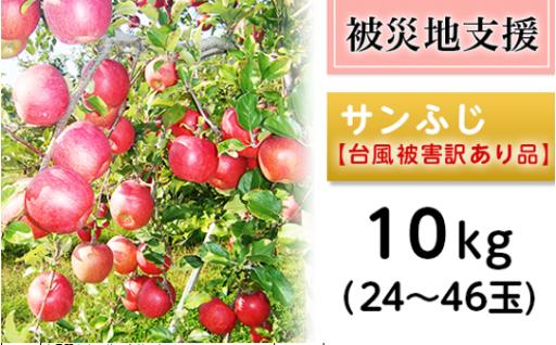【被災地支援!】長野資産サンふじ10kg(24~46玉)