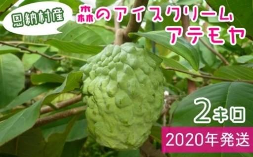 【2020年発送】森のアイスクリーム 恩納村産アテモヤ2kg