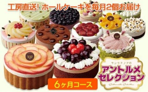 【定期便】毎月ケーキが届く!6ヶ月コース