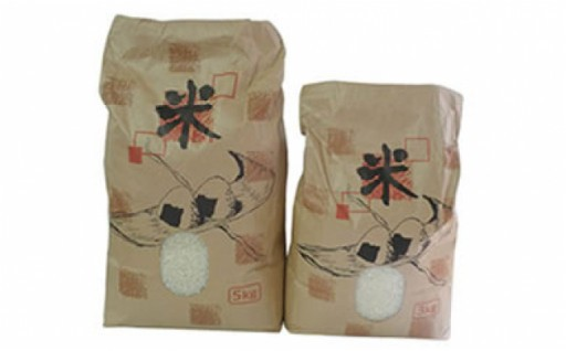 【数量限定100個】能登の潮騒米(令和元年産コシヒカリ)
