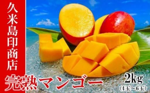 【2020年発送】久米島印商店完熟マンゴー2kg(4~6玉)