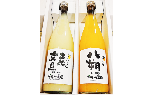 千光士農園の土佐文旦果汁と八朔果汁のセット