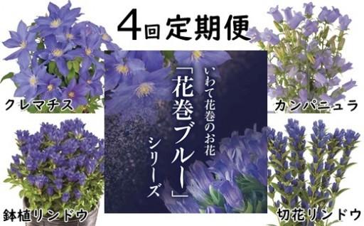 いわて花巻のお花「花巻ブルー」4種を最も美しい時期にお届け!
