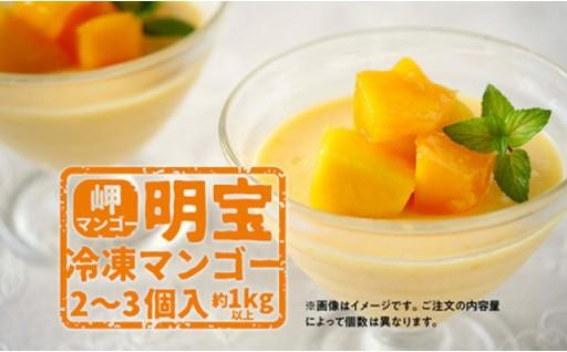 岬マンゴー【明宝】の冷凍マンゴー