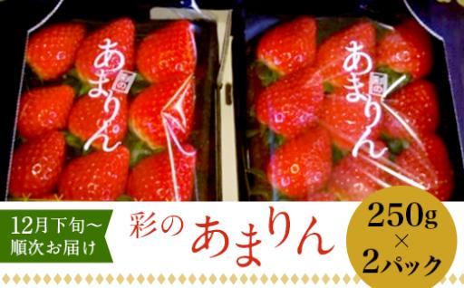 """極甘いちご♪貴重な """"彩のあまりん"""" (250g×2パック)"""