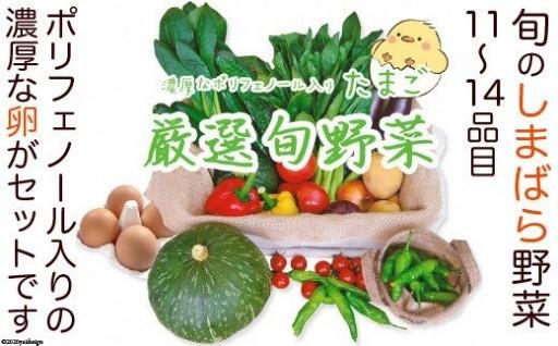 島原産の野菜、卵、果物 とりあえず食べてほしい詰め合わせ