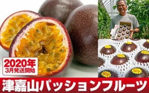 【2020年発送】津嘉山パッションフルーツ 約1kg