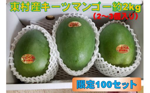 【農家直送!】キーツマンゴー約2kg(2~3玉)