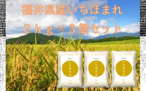 3月発送分「令和元年福井県産いちほまれ」2kg×3