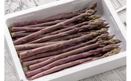 希少!甘くてやわらか~い『紫アスパラ』。生でも食べられます!