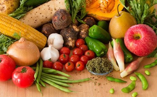 旬の野菜宅配便 新鮮で安心・安全な野菜をお届けします