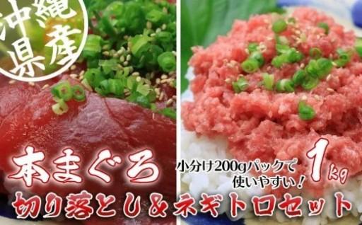 沖縄県産 本まぐろ切り落とし&ネギトロセット 1kg