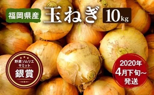 【先行予約】 玉ねぎ 10kg 嘉麻市産サラダ 玉葱