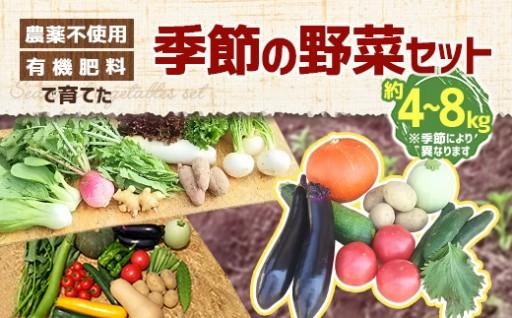 有機肥料で育てた 季節の野菜セット 約4~8kg
