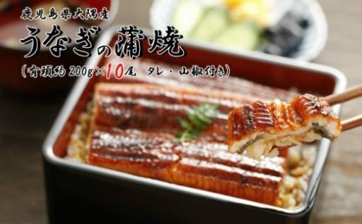 大隅産うなぎの蒲焼 200g×10尾(有頭)