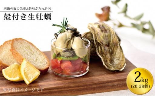 今が旬!生牡蠣2kg。食べかたいろいろ!生でも蒸しでも!