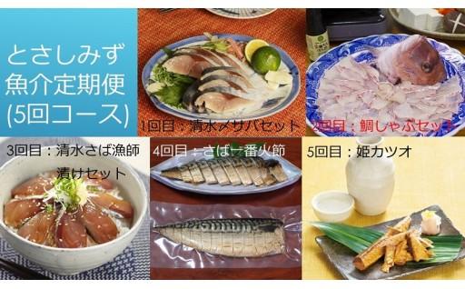 土佐清水市ならではのおいしい魚介の加工品定期便