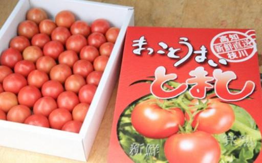 まっことうまい!水田さんのフルーツトマト