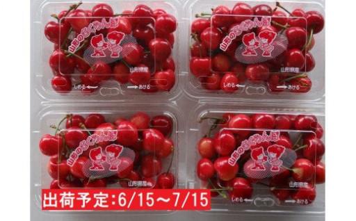 さくらんぼ880g(220g×4)秀M~L